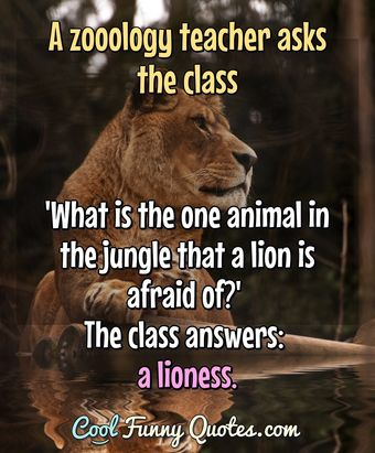Photo of lioness sitting on grass with quotation about lion being afraid.