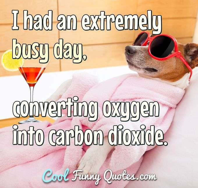 I had an extremely busy day, converting oxygen into carbon dioxide. - Anonymous