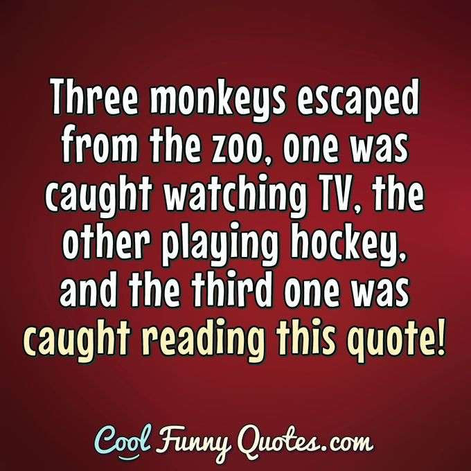 Three monkeys escaped from the zoo, one was caught watching TV, the other playing hockey, and the third one was caught reading this quote! - Anonymous