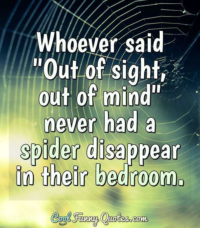 "Whoever said ""Out of sight, out of mind"" never had a spider disappear in their bedroom. - Anonymous"