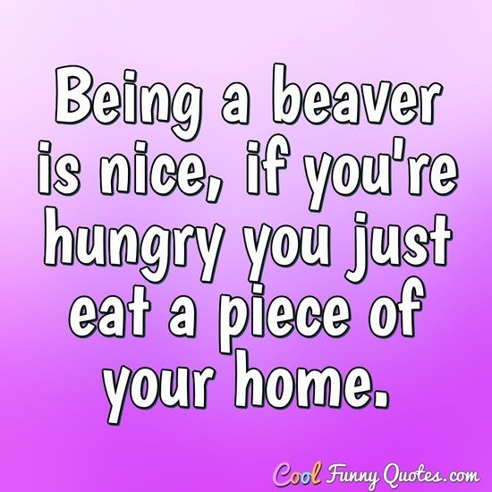 Being a beaver is nice, if you're hungry you just eat a piece of your home. - Anonymous