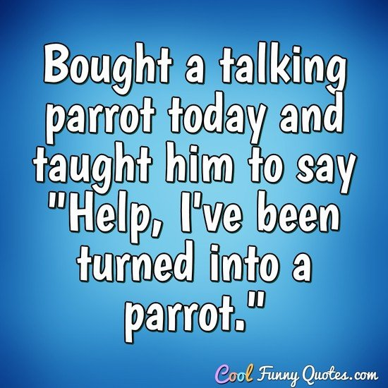 Bought a talking parrot today and taught him to say Help, I've been turned into a parrot.
