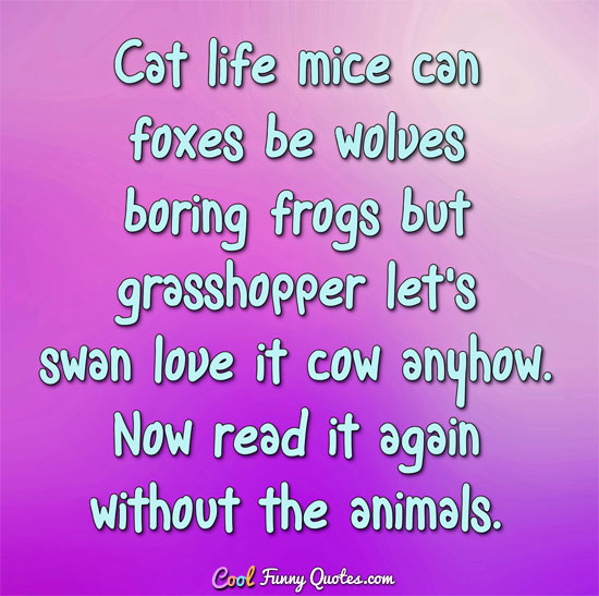 Cat life mice can foxes be wolves boring frogs but grasshopper let's swan love it cow anyhow.  Now read it again without the animals. - CoolFunnyQuotes.com