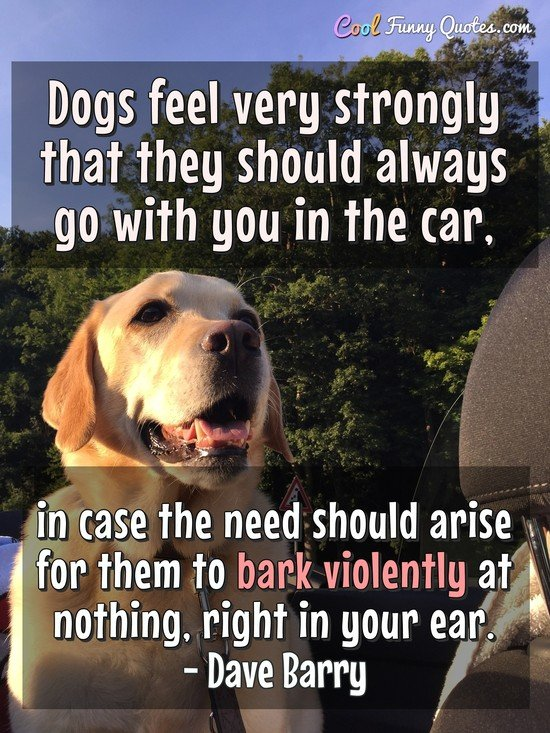 Dogs feel very strongly that they should always go with you in the car, in case the need should arise for them to bark violently at nothing, right in your ear. - Dave Barry
