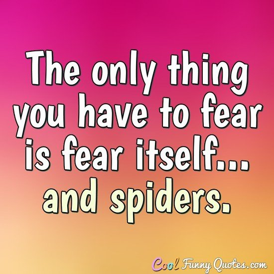 The only thing you have to fear is fear itself... and spiders.