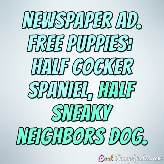 Newspaper Ad. FREE PUPPIES: Half cocker spaniel, half sneaky neighbors dog. - Anonymous