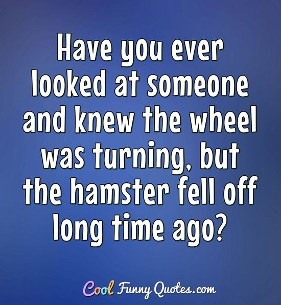 Have you ever looked at someone and knew the wheel was turning, but the hamster fell off long time ago? - Anonymous