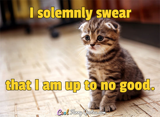 I solemnly swear that I am up to no good. - Anonymous