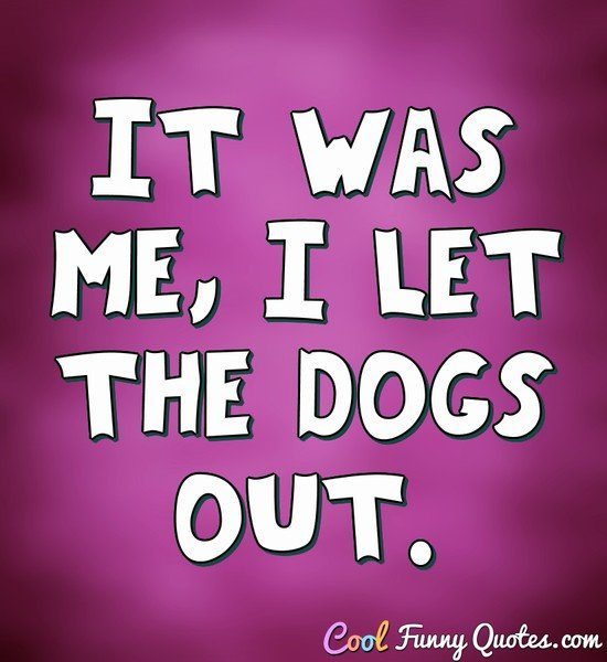 It was me, I let the dogs out. - Anonymous