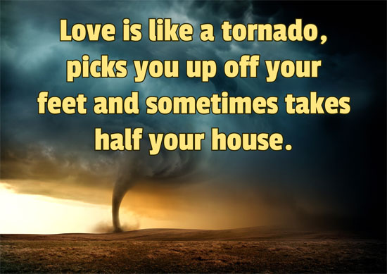 Love is like a tornado, picks you up off your feet and sometimes takes half your house. - Anonymous