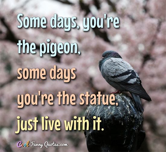 Some days, you're the pigeon, some days you're the statue, just live with it.