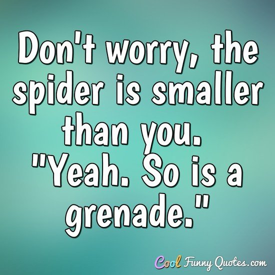 "Don't worry, the spider is smaller than you. ""Yeah. So is a grenade."" - Anonymous"