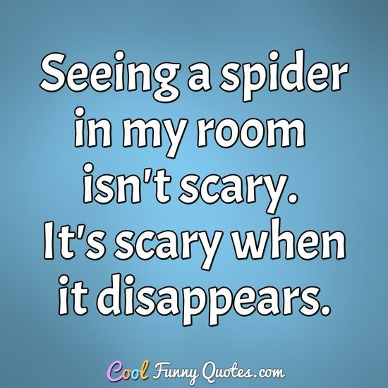 Seeing a spider in my room isn't scary. It's scary when it disappears. - Anonymous