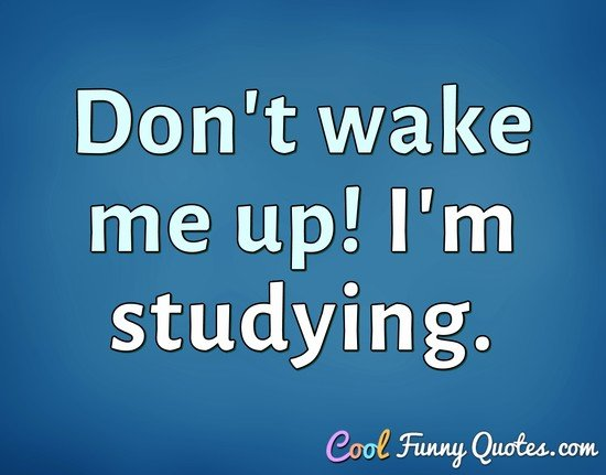 Don't wake me up! I'm studying. - Anonymous