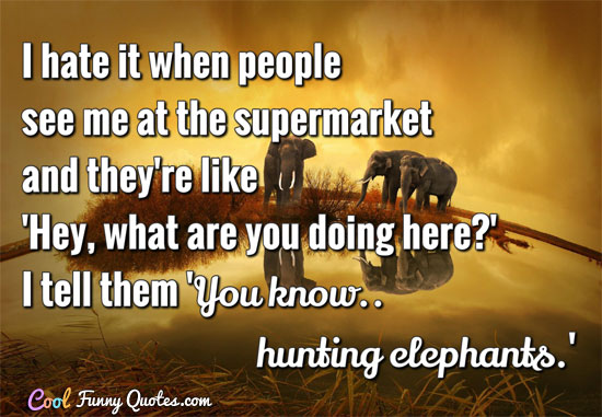 I hate it when people see me at the supermarket and they're like 'Hey, what are you doing here?'  I tell them 'You know.. hunting elephants.'