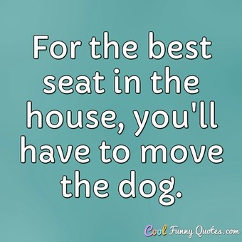 For the best seat in the house, you'll have to move the dog.
