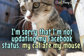 I'm sorry that I'm not updating my Facebook status.