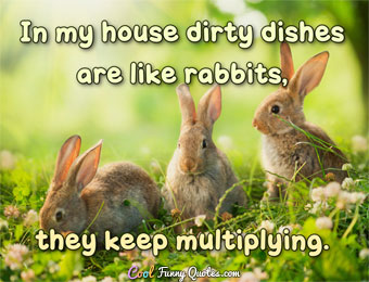In my house dirty dishes are like rabbits, they keep multiplying.