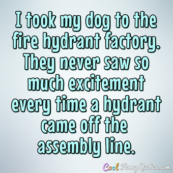 I took my dog to the fire hydrant factory. They never saw so much excitement every time a hydrant came off the assembly line.
