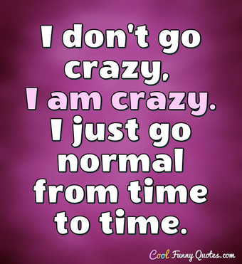 I don't go crazy, I am crazy. I just go normal from time to time. - Anonymous