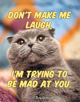 Don't make me laugh, I'm trying to be mad at you. - Anonymous