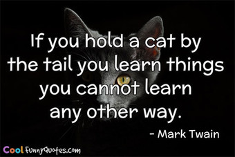 If you hold a cat by the tail you learn things you cannot learn any other way.