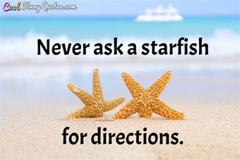 Never ask a starfish for directions. - Anonymous