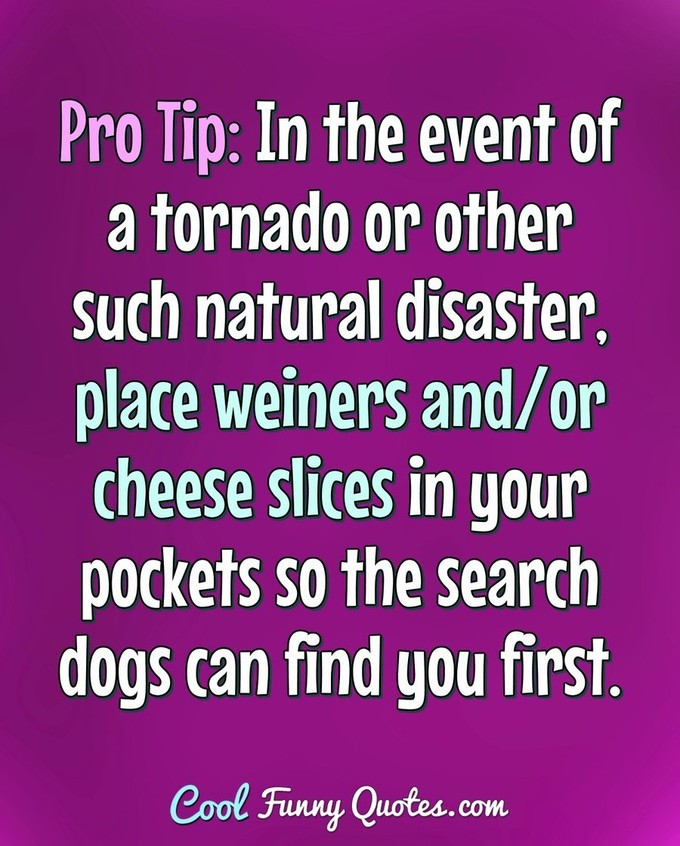 Pro Tip: In the event of a tornado or other such natural disaster, place weiners and/or cheese slices in your pockets so the search dogs can find you first. - Anonymous
