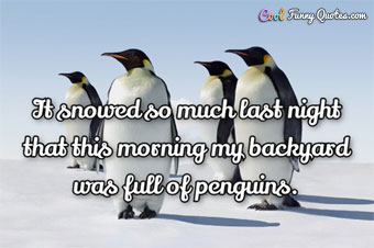 It snowed so much last night that this morning my backyard was full of penguins.