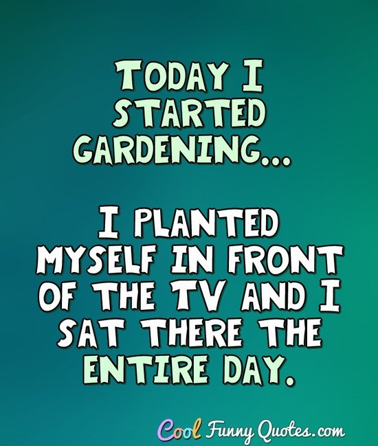 Today I started gardening... I planted myself in front of the TV and I sat there the entire day. - Anonymous