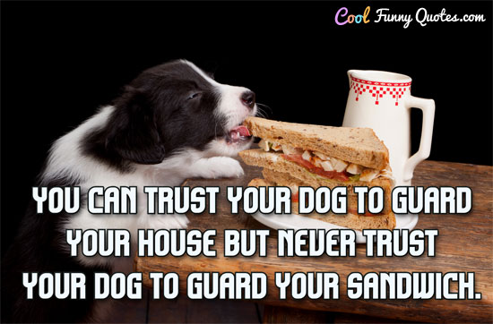 You can trust your dog to guard your house but never trust