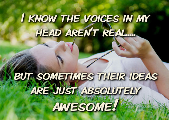 I know the voices in my head aren't real..... but sometimes their ideas are just absolutely awesome!
