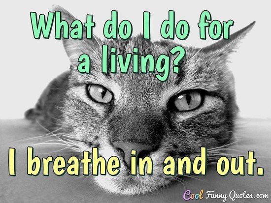 What do I do for a living? I breathe in and out. - Anonymous